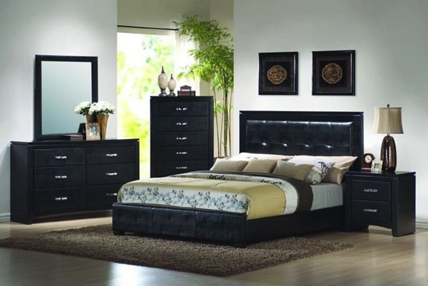 Dylan Transitional Black 2pc Queen Bedroom Set CST-20140-S3