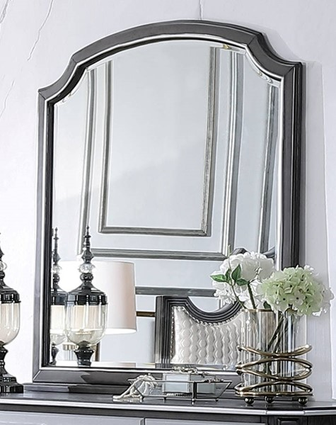 Acme Furniture House Beatrice Charcoal Mirror ACM-28814