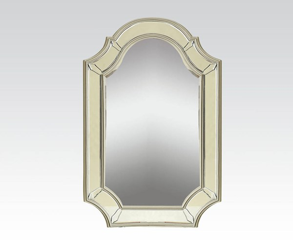 Selby Antique Silver Wood Glass Accent Mirror ACM-90131