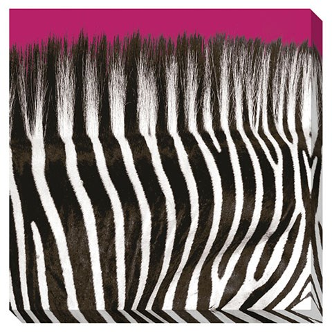 Jabbar Contemporary Black White Hot Pink Wall Art A8000169