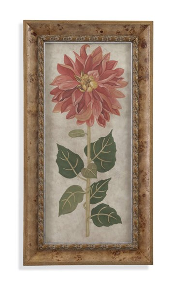 Cream Dahlia I Floral & Botanical Wall Art BMC-9900-277CEC
