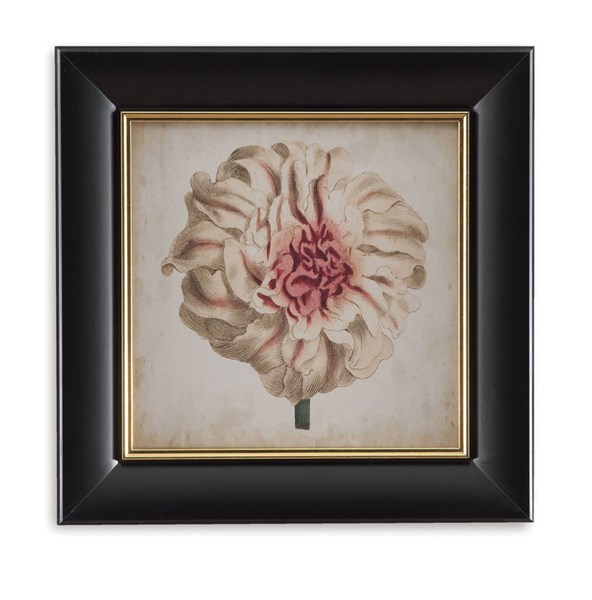 Black Gold Pop Floral VII Botanical Wall Art BMC-9900-301GEC