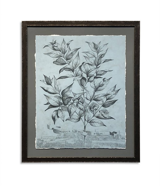 Bassett Mirror Teal Custom Botanical I Wall Art BMC-9901-395A