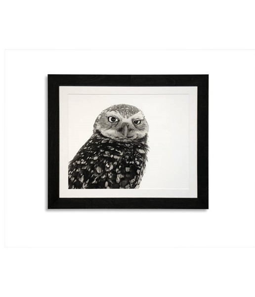 Bassett Mirror Black White Burrowing Owl Wall Art BMC-9901-492