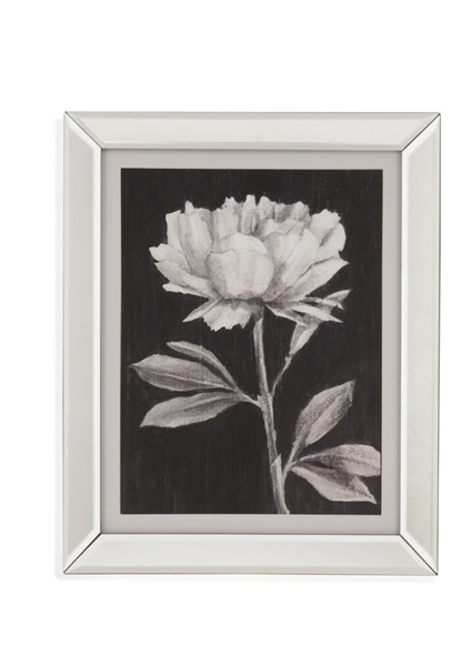 Bassett Mirror Black White Flowers III Wall Art BMC-9901-542C