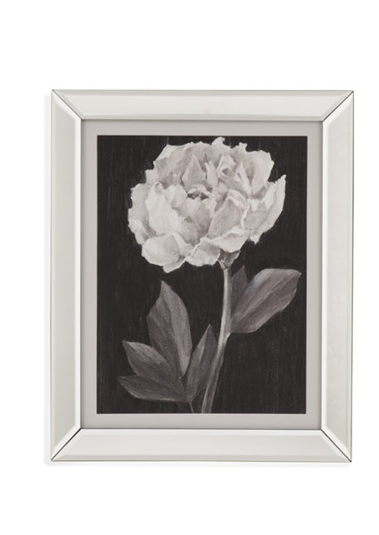 Bassett Mirror Black White Flowers IV Wall Art BMC-9901-542E