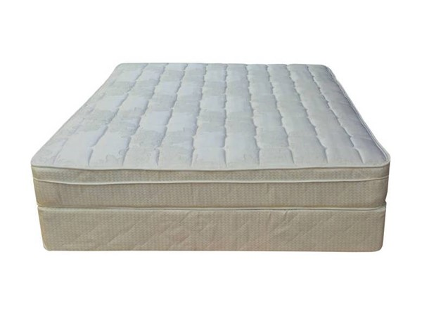 Comfort Bedding Tomorrows Dream Euro Top Plush Single Sided King Mattress and Box M440-8