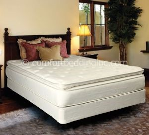 Spinal Comfort White Brown Pillowtop Soft Full Mattress And Box M825-04