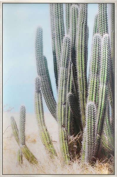 Crestview Collection Silver Prickly 1 Wall Art CRST-CVTOP2702