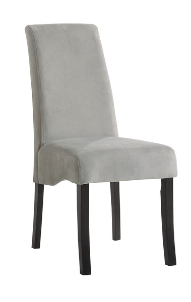 2 Stanton Contemporary Gray Side Chairs CST-102062