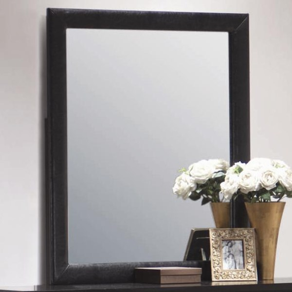Dylan Transitional Black Wood Glass Mirror CST-201404