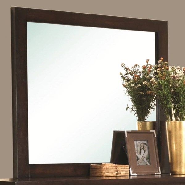 Cameron Transitional Rich Brown Wood Mirror CST-203494