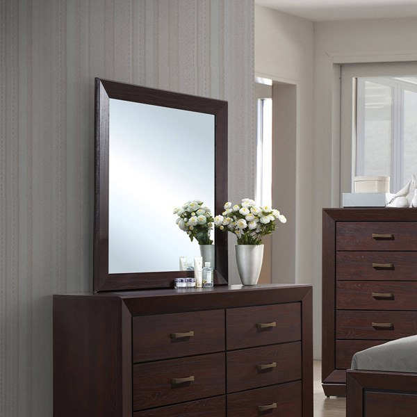 Fenbrook Transitional Dark Cocoa Wood Glass Mirror CST-204394