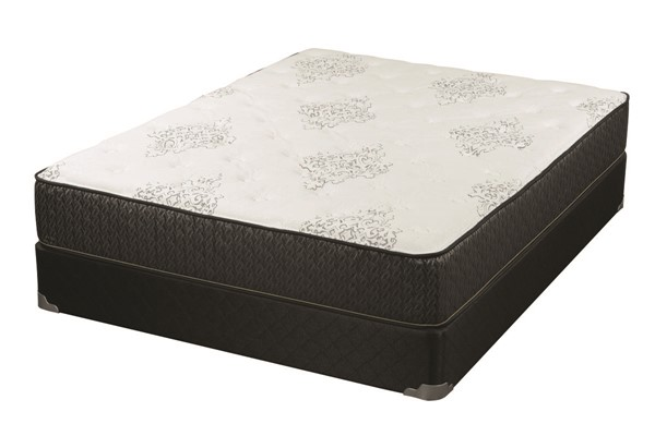 Coaster Furniture Freya White Grey 11.50 Inch Cal King Mattress CST-350372KW