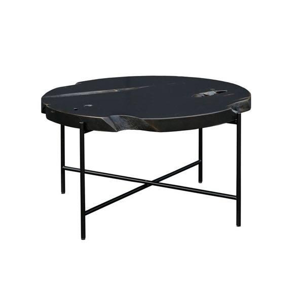 Moes Home Petro Grey Coffee Table MOE-EI-1054-15