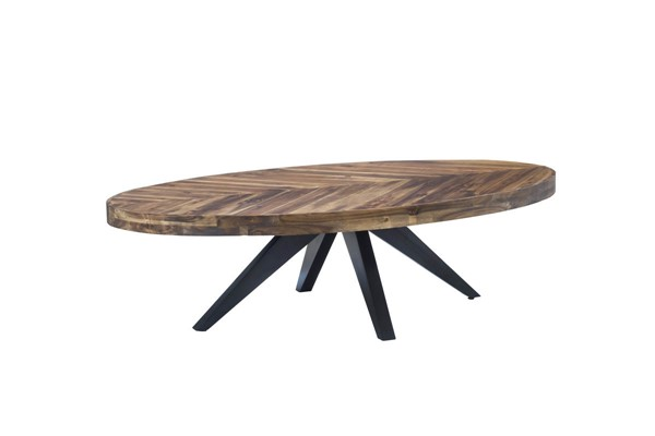Moes Home Parq Cappuccino Oval Coffee Table MOE-TL-1020-14