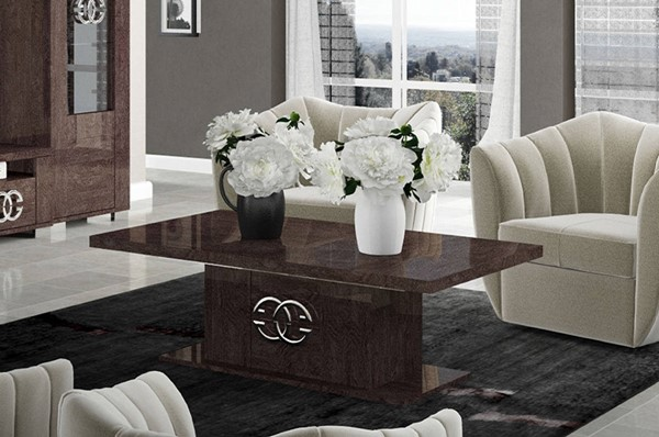 ESF Status Italy Walnut Storage Coffee Table ESF-i11194