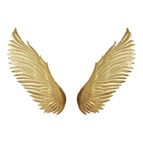 Moes Home Gold Wings Wall Decor MOE-HZ-1023-32