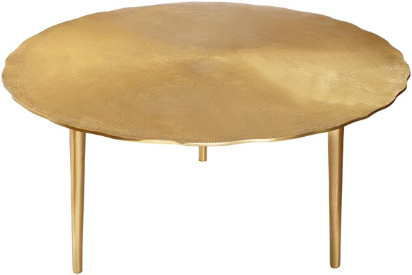 Meridian Furniture Rohan Gold Coffee Table MRD-259-CT
