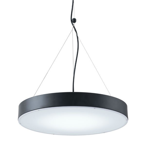 Home Roots Black Acrylic Metal Ceiling Lamp OCN-295013