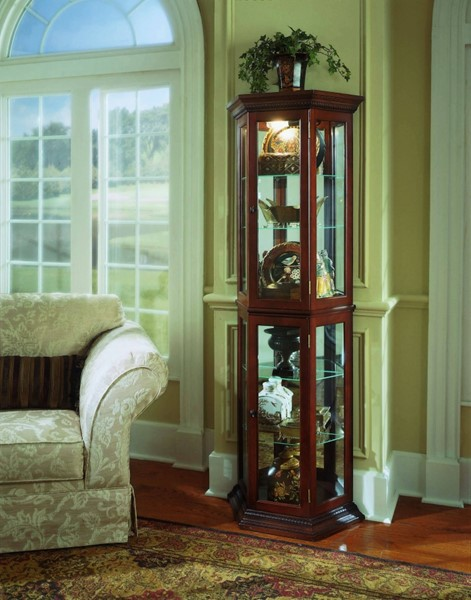 Pulaski Furniture Dark Brown Curio RH-20853