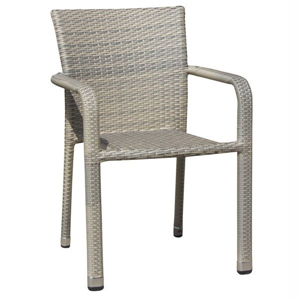 4 Saint Birch Carter Gray Dining Chairs SANT-SBDYODC001G4