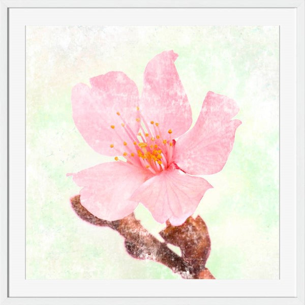 Surya Eternal Pink Paper Wall Art - 20x20 AI270A001-2020