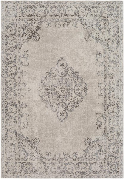 Surya Amsterdam Medium Gray Brown Ivory Chenille Cotton Area Rug - 36x24 AMS1007-23