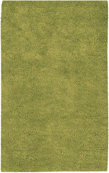 Aros Moss Wool - Felted Area Rug - 60 x 96 AROS6-58