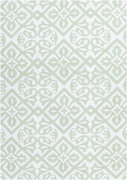 Cape Cod Ivory Mint Polyester Area Rug - 24 x 36 CCD1011-23
