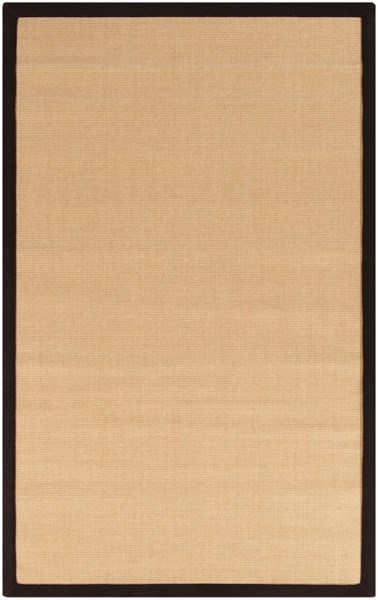 Clinton Contemporary Chocolate Beige Sisal Area Rug (L 93 X W 60) CLN9001-579