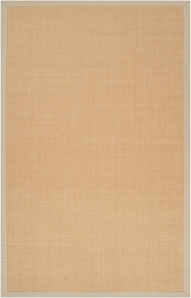 Clinton Contemporary Light Gray Beige Sisal Area Rug (L 93 X W 60) CLN9002-579