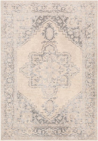 Surya City light Charcoal Light Gray Cream Polypropylene Area Rug - 120x94 CYL2316-71010