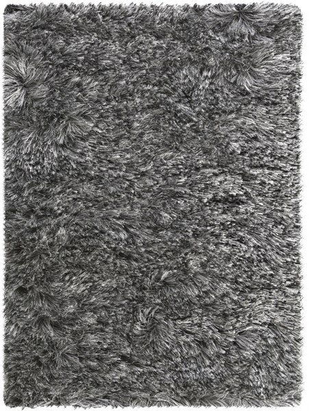 Dunes Modern Charcoal Polyester Area Rug (L 36 X W 24) DNE3503-23