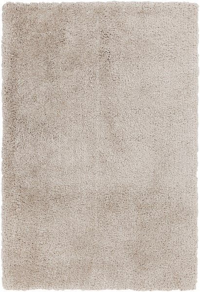 Goddess Contemporary Ivory Polyester Rectangle Area Rug (L 90 X W 60) GDS7503-576