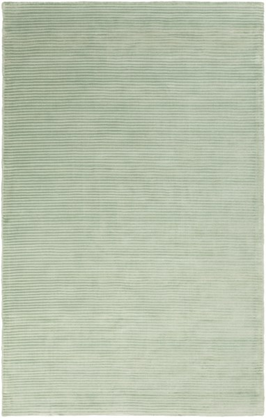 Graphite Sea Foam Viscose Area Rug - 60 x 96 GPH55-58
