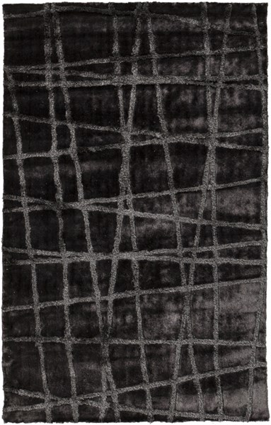 Graph Charcoal Taupe Polyester Area Rug - 60 x 96 GRP2001-58