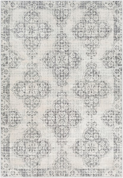 Surya Harput Transitional Light Gray Charcoal Beige Area Rug - 67 x 47 HAP1083-31157
