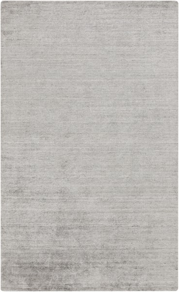 Haize Light Gray Viscose Area Rug - 60 x 96 HAZ6012-58