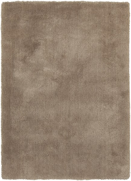 Heaven Contemporary Beige Polyester Shag Area Rug HEA8001-57