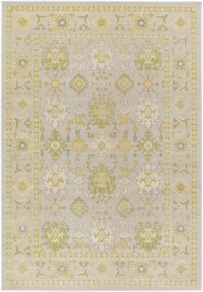 Surya Mavrick Lime Light Gray Wheat Machine Made Area Rug 116 x 81 MAV7035-6998