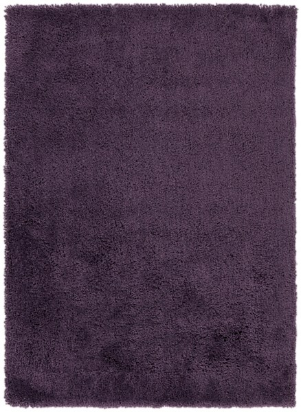 Mellow Contemporary Eggplant Polyester Area Rug (L 84 X W 60) MLW9009-57