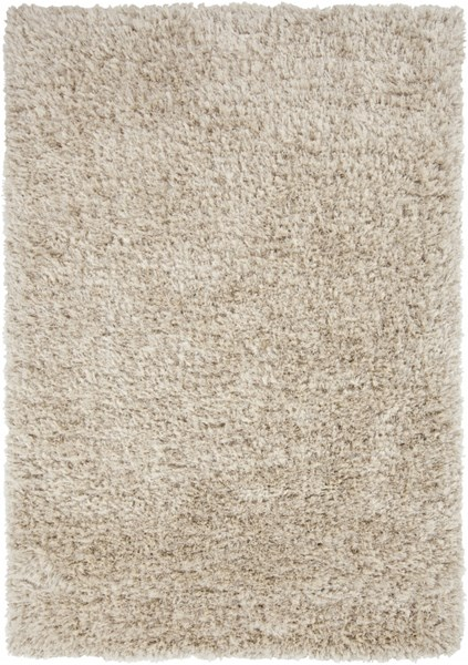 Rhapsody Contemporary Beige Polyester Fabric Area Rug (L 96 X W 60) RHA1002-58