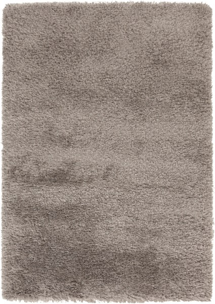 Rhapsody Contemporary Taupe Polyester Fabric Area Rug (L 96 X W 60) RHA1033-58