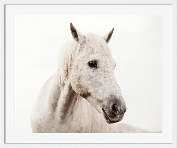 Surya Eternal Paper Wild White Horse Wall Art - 16x18 SI103A001-1618