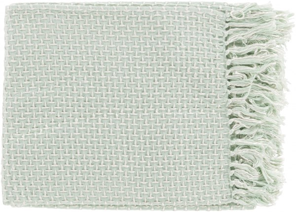 Tierney Traditional Mint Ivory Cotton Viscose Throws TIE1005-5060