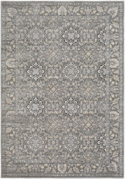Surya Tranquil Light Gray Cream Polypropylene Polyester Area Rug - 120x96 TQL1000-810