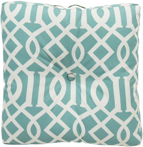 Storm Teal Ivory Polyester Throw Pillow (L 22 X W 22 X H 5) ZZ417-2222