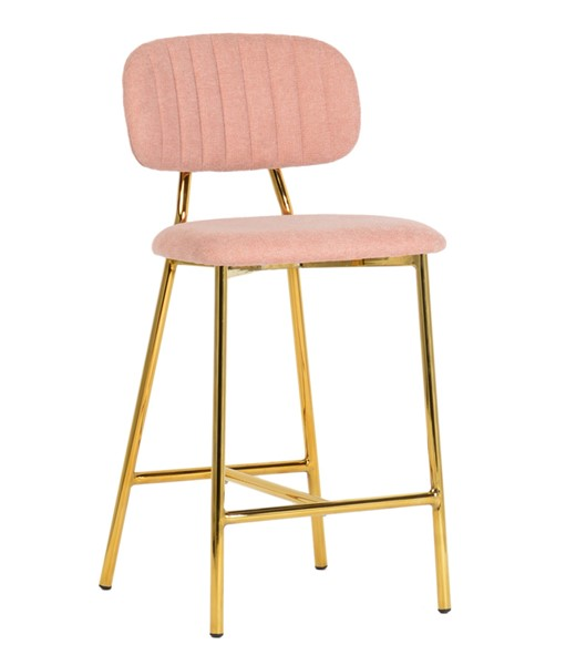 2 TOV Furniture Ariana Blush Counter Stools TOV-D4334