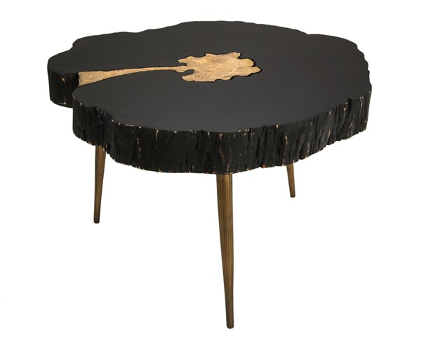 TOV Furniture Timber Black Brass Cocktail Table TOV-OC18167